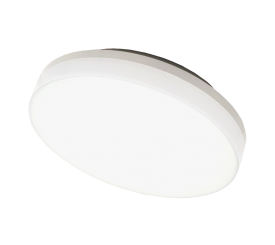 RIO/RIOSENS CEILING AND WALL MOUNTED LUMINAIRE